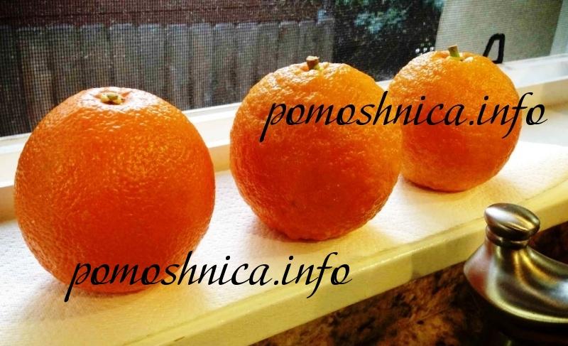 Апельсины для приготовления повидла фото