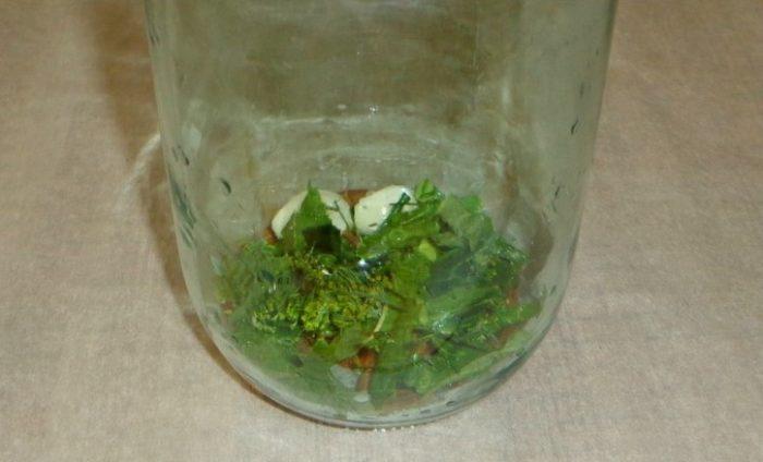 укладка чеснока и зелени в банку фото