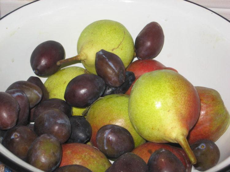 фото к рецепту варенья из слив и груш