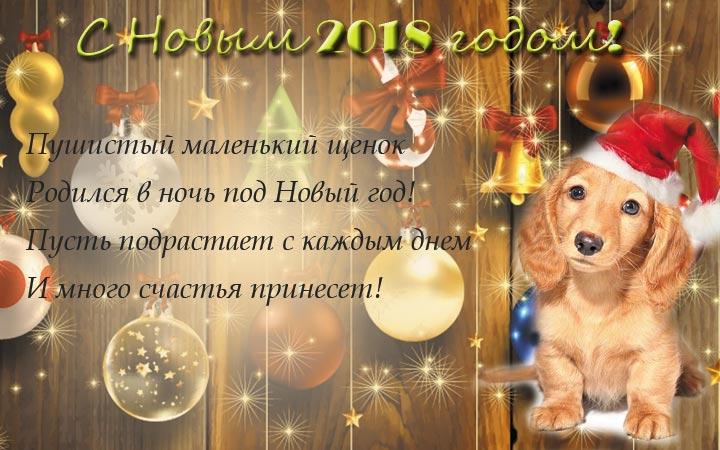 novogodnie-pozdravleniya-s-nastupayushchim-2018-godom-51